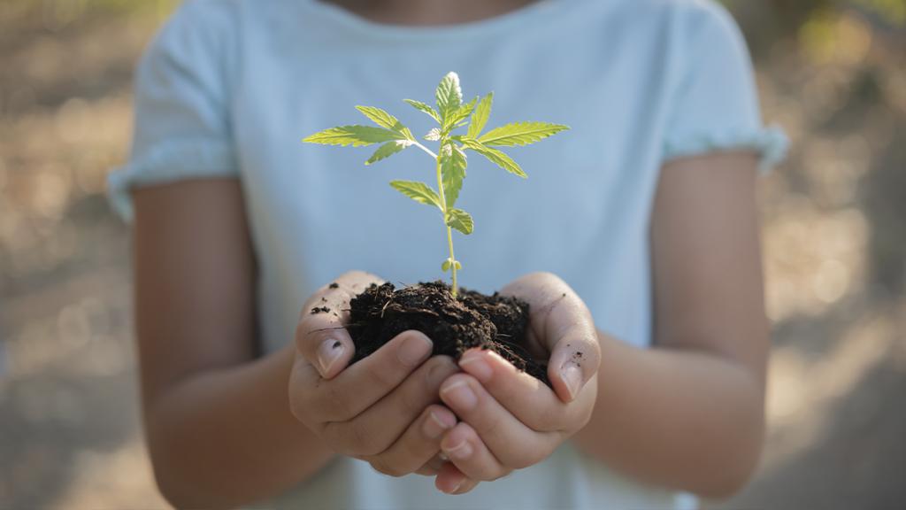 sostenibilidad infancia medio ambiente